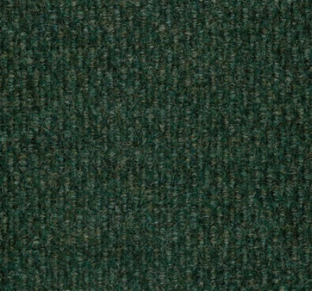 Fern Green Close Up