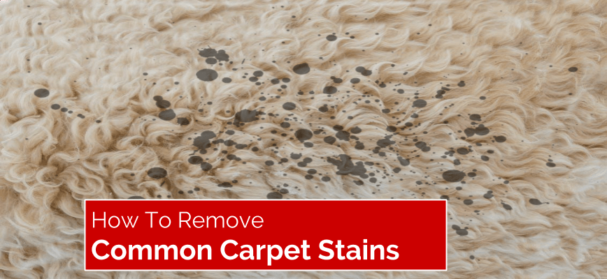 How To Easily Remove Common Carpet Stains